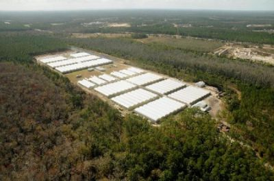 Growth Biz Florida Gets 28 Applications To Grow Charlotte